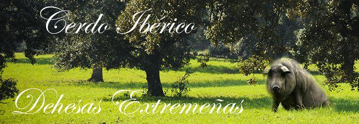 jamon-iberico-bellota-extremadura-jamon-y-placeres-extremenos-cerdo-puro-iberico2